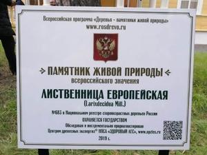 Лиственница у пушкинской усадьбы стала памятником живой природы
