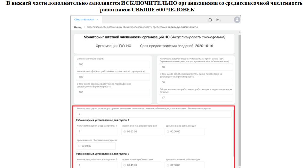 Инструкция по заполнению отчета о сотрудниках на «удаленке» разработана для нижегородских работодателей - фото 9