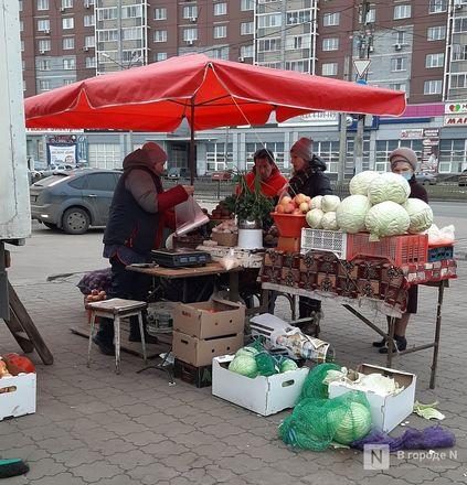 Нижегородские рынки: пережиток прошлого или изюминка города? - фото 19