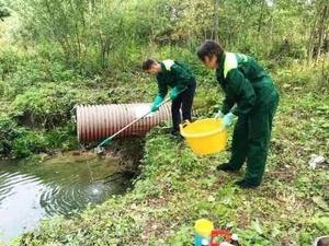 Завод в Кулебакском районе по производству воды оштрафовали за загрязнение ручья