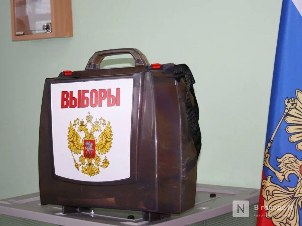 Количество депутатов гордумы Нижнего Новгорода сократится с 47 до 35 - фото 1