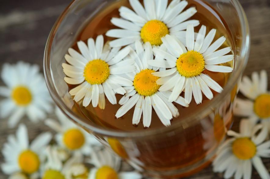 Пять вкусных народных средств, которые помогут вылечить простуду - фото 2