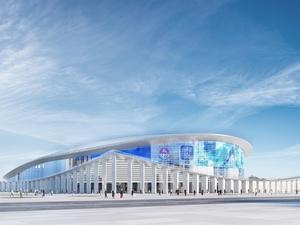 К вопросу строительства ледовой арены на Стрелке вернутся через два года