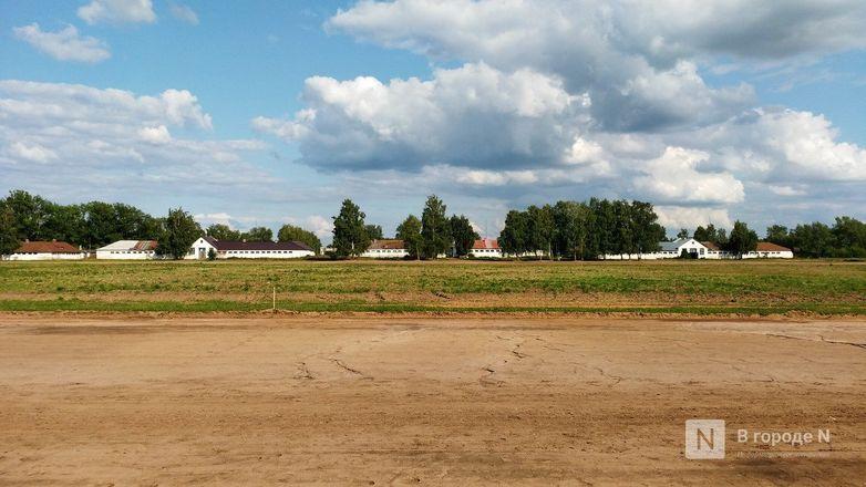 Нижегородский ипподром отдали мебельной компании - фото 8