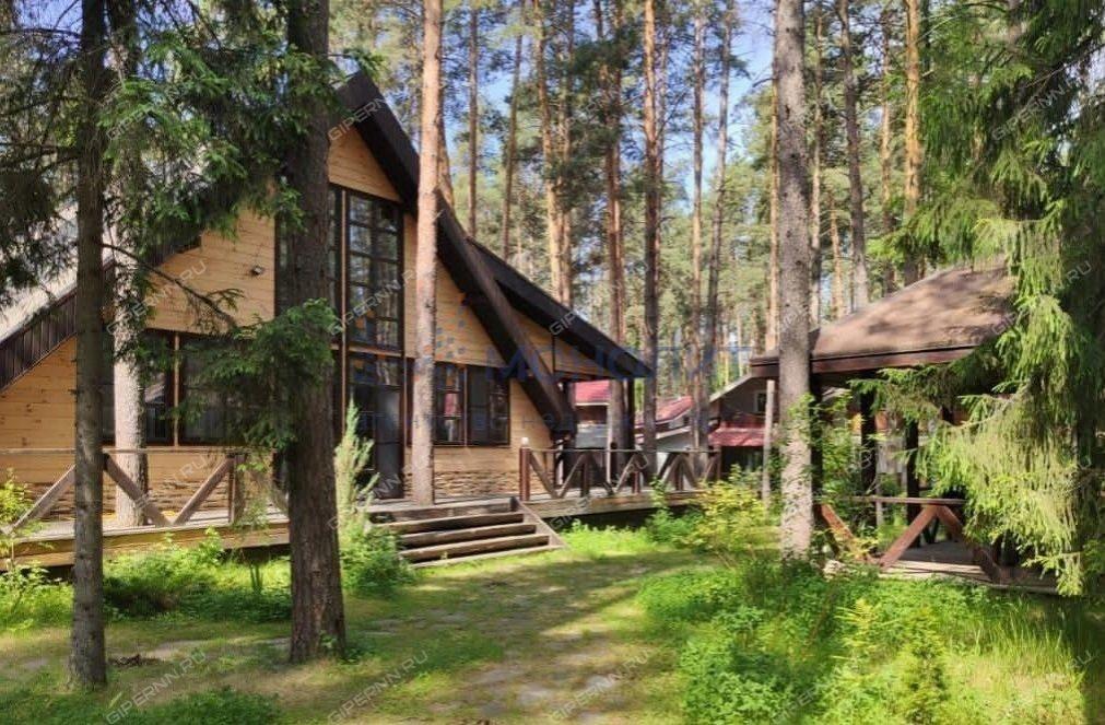 Дворцы неПутина: самые дорогие особняки Нижегородской области - фото 3