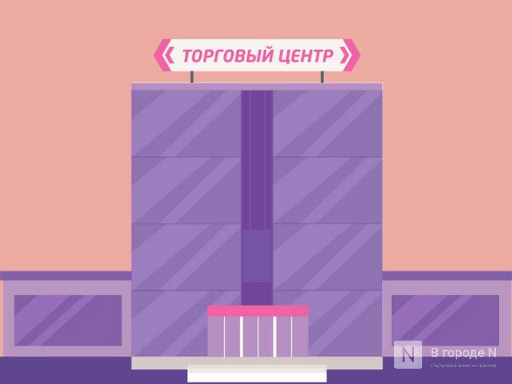 Чего ждать торговым центрам Нижнего Новгорода от 2019 года? - фото 1