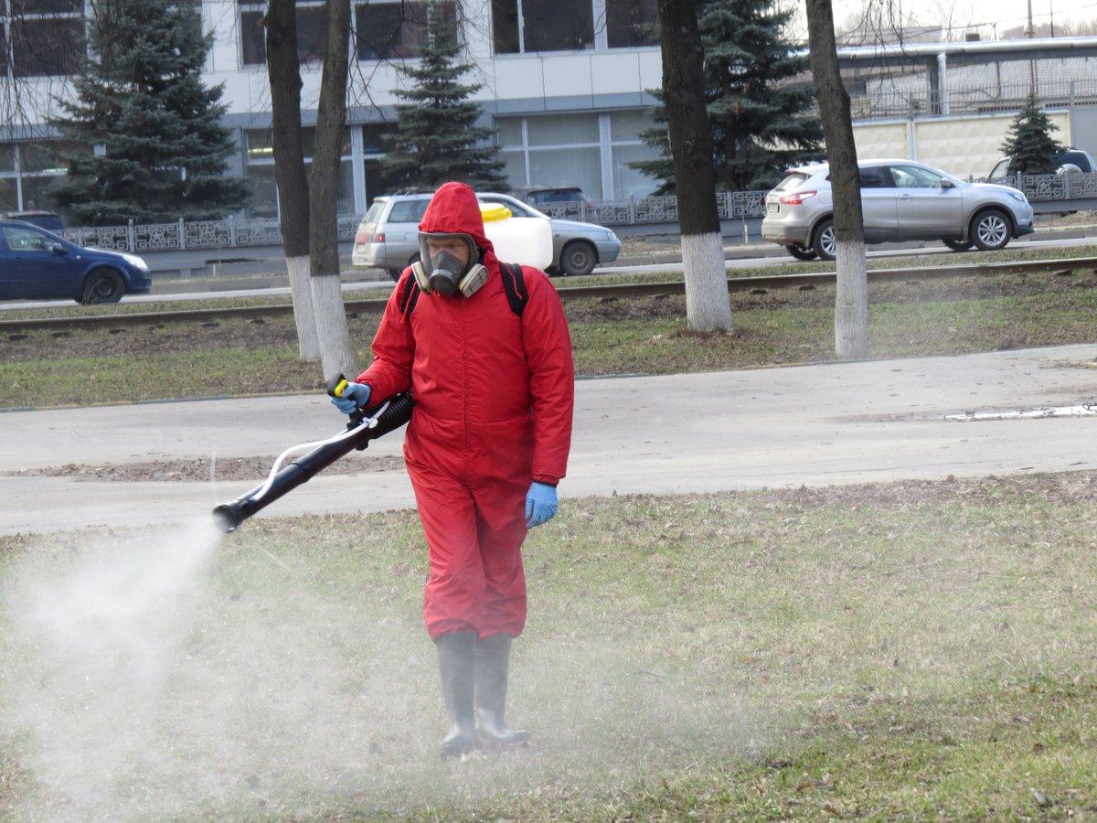 Все парки, скверы и детские площадки Нижнего Новгорода обработают от клещей до конца мая - фото 1