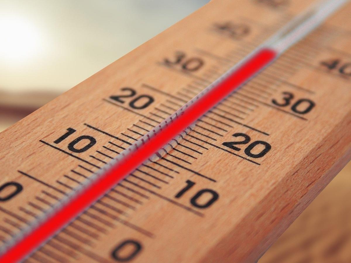 МЧС предупреждает о сильной жаре в Нижегородской области - фото 1