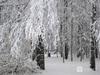 Морозы до -15°С придут в Нижний Новгород на новой рабочей неделе