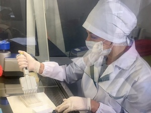 16 энцефалитных клещей обнаружено в Нижегородской области