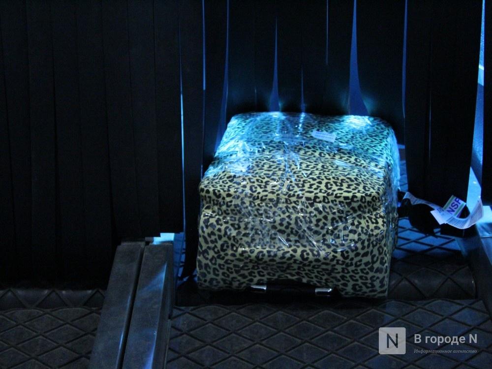 «Антикоронавирусные» кабины для багажа появились в нижегородском аэропорту - фото 3