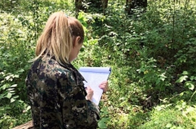 Уголовное дело возбуждено по факту убийства девушки на Малышевских гривах - фото 1