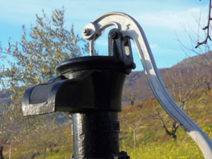 Вадский свинокомплекс оштрафовали за добычу воды