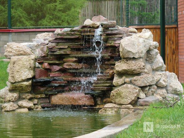 Уникальный вольер для марабу построили в нижегородском зоопарке - фото 9
