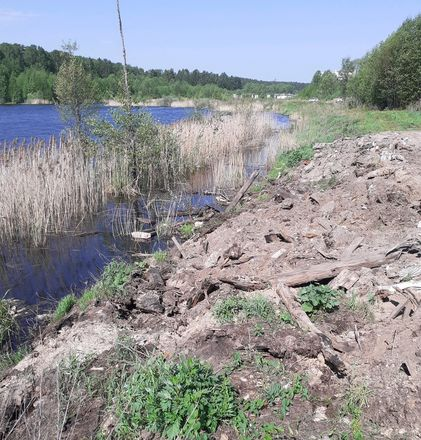 200 тысяч рублей штрафа выплатит администрация Заволжья за несанкционированную свалку - фото 2